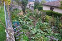 lejardinvertical_jardin-foret-001.jpg